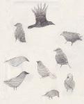 Pencil - Crows
