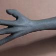 lokuña's hand 02